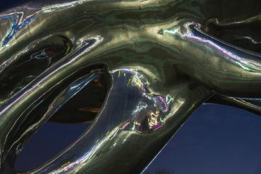 espinosa-art-photo_sculpture-reflection-02